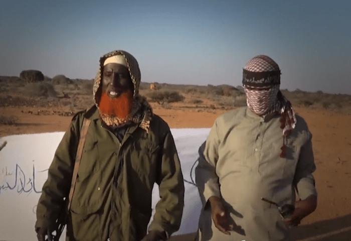 airstrike-kills-deputy-leader-of-is-in-somalia