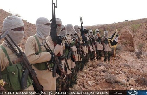 UN report says Somali Islamic State controls Central Africa affiliate