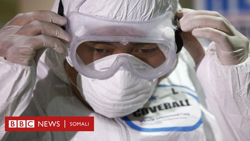 qofkii-ugu-horreeyay-oo-coronavirus-ugu-dhintay-meel-ka-baxsan-shiinaha