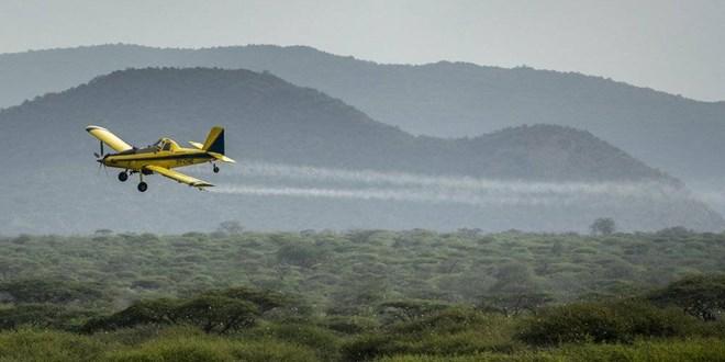 crews-use-spray-planes-to-combat-massive-locust-swarms-in-east-africa