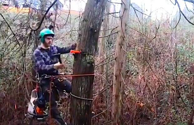 video:-daawo-nasiibdarrada-ku-dhacda-ninkan-geedka-goynaya