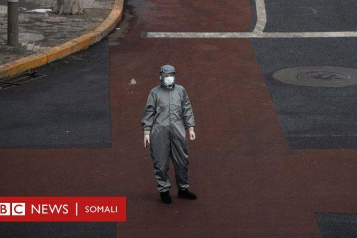 WHO: 'wararka been abuurka ayaa caqabad ku noqday la dagaallanka coronavirus'