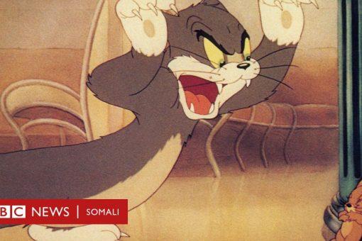 Tom & Jerry: 80 sano ayaa la daawanayaa dagaalka bisadda iyo jiirka