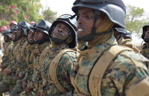 Somali troops still vulnerable to al-Shabaab outside Mogadishu, Pentagon says
