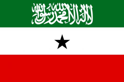 Somaliland oo Dhistay Guddi la Dagaalama Daroogada