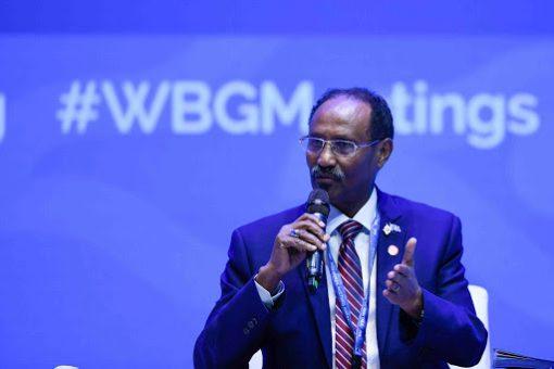 Diaspora has big role as Somalia rebuilds economy, global ties: finance minister