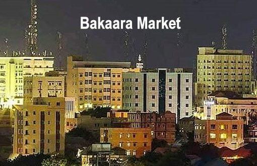 Chaos profiteers; how Somalia's businessmen are it's main nemesis?