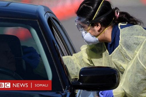 Coronavirus: Mareykanku ma baarayaa dad ka badan kuwa ay baarto Kuuriyada Koonfureed?