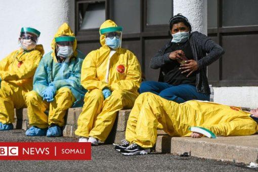 Coronavirus: Maxay yihiin sababaha khatarta gelinaya shaqaalaha caafimaadka?