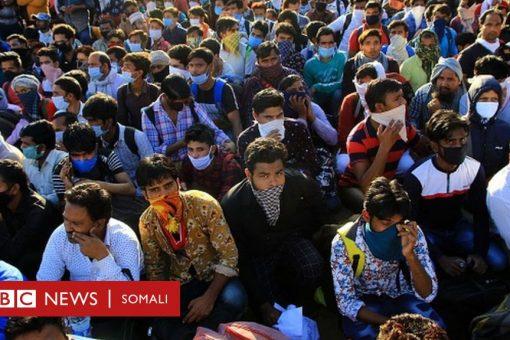 Coronavirus: Corona: Xayiraadda Hindiya oo musiibo bina'aadannimo isu badeshay
