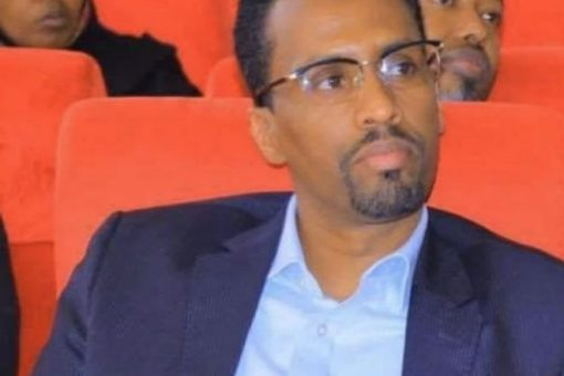 Ethiopia Replaces Security Chief in Restive Gas Region, ENA Says