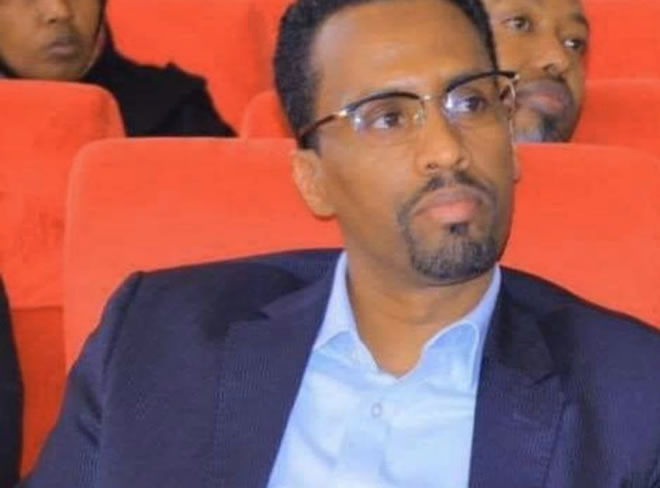 ethiopia-replaces-security-chief-in-restive-gas-region,-ena-says