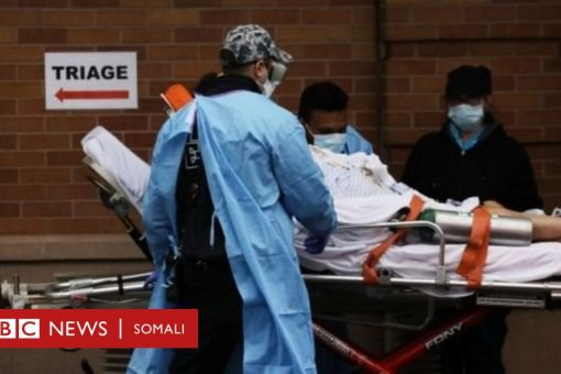 Coronavirus: Trump oo Mareykanka uga digay in dhimashada ay sare u kici karto