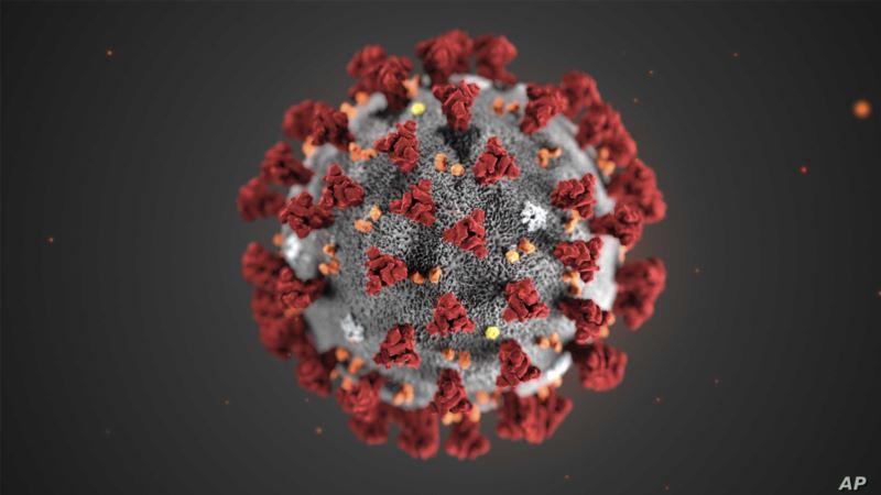 tirada-dadka-u-geeriyooday-coronavirus-oo-dhaaftay-65,000