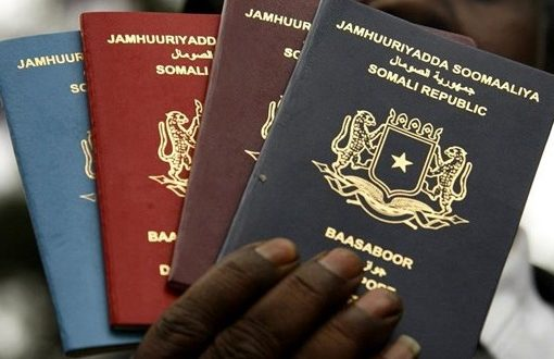 Somalia suspends passport application services in fight against COVID-19
