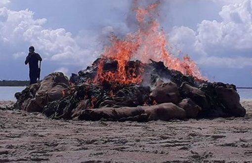 Sh25m miraa haul torched in Lamu
