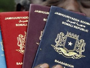 passport-services-in-somalia-to-resume-sunday-immigration-department