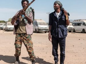 ethiopian-forces-to-take-tigray's-capital-'in-a-few-days':-army
