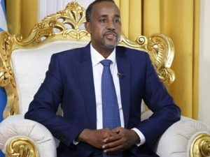 somali-premier-appoints-committees-to-probe-clashes