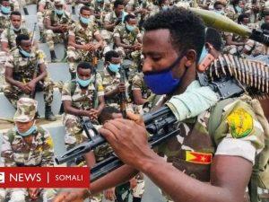 colaadda-tigray:-ciidamada-eritrea-oo-lagu-eedeeyay-xasuuq