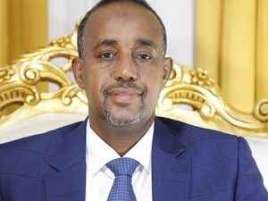 somali-premier-appoints-committee-to-probe-missing-recruits