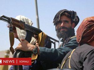 taliban-'ma-aysan-beddelin-dharkooda,-timahooda-iyo-garkooda,-sidey-ku-beddelayaan-fikirkooda?'